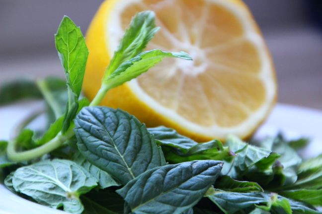 Limonana-Zutaten