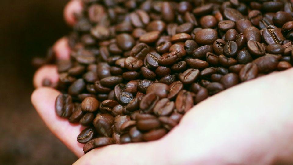 Kaffee-Fakten